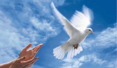 """Résultat de recherche d'images pour """"La colombe de l'espérance"""""""