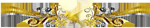 oiseau-jaune.png